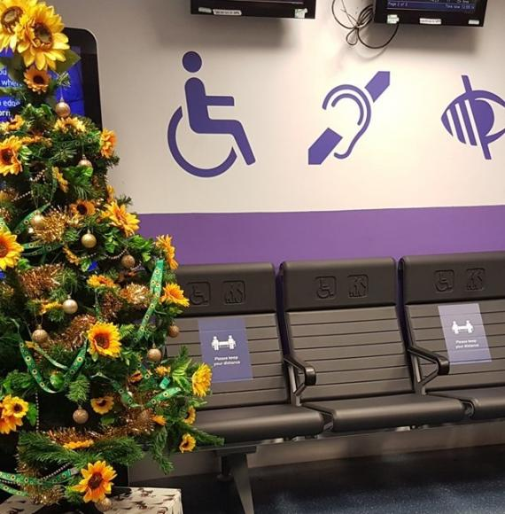 Euston station's 'sunflower' Christmas tree