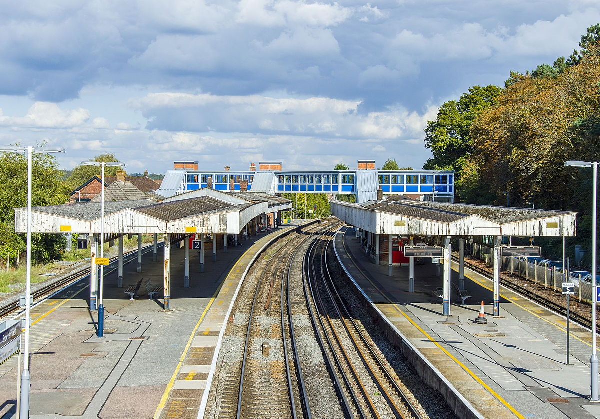 New Forest railway line proposed despite criticism for 'pie in the sky' idea