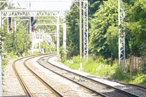 Network Rail tree felling must undergo consultation – MP